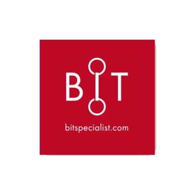 Logotyp bitspecialist.com