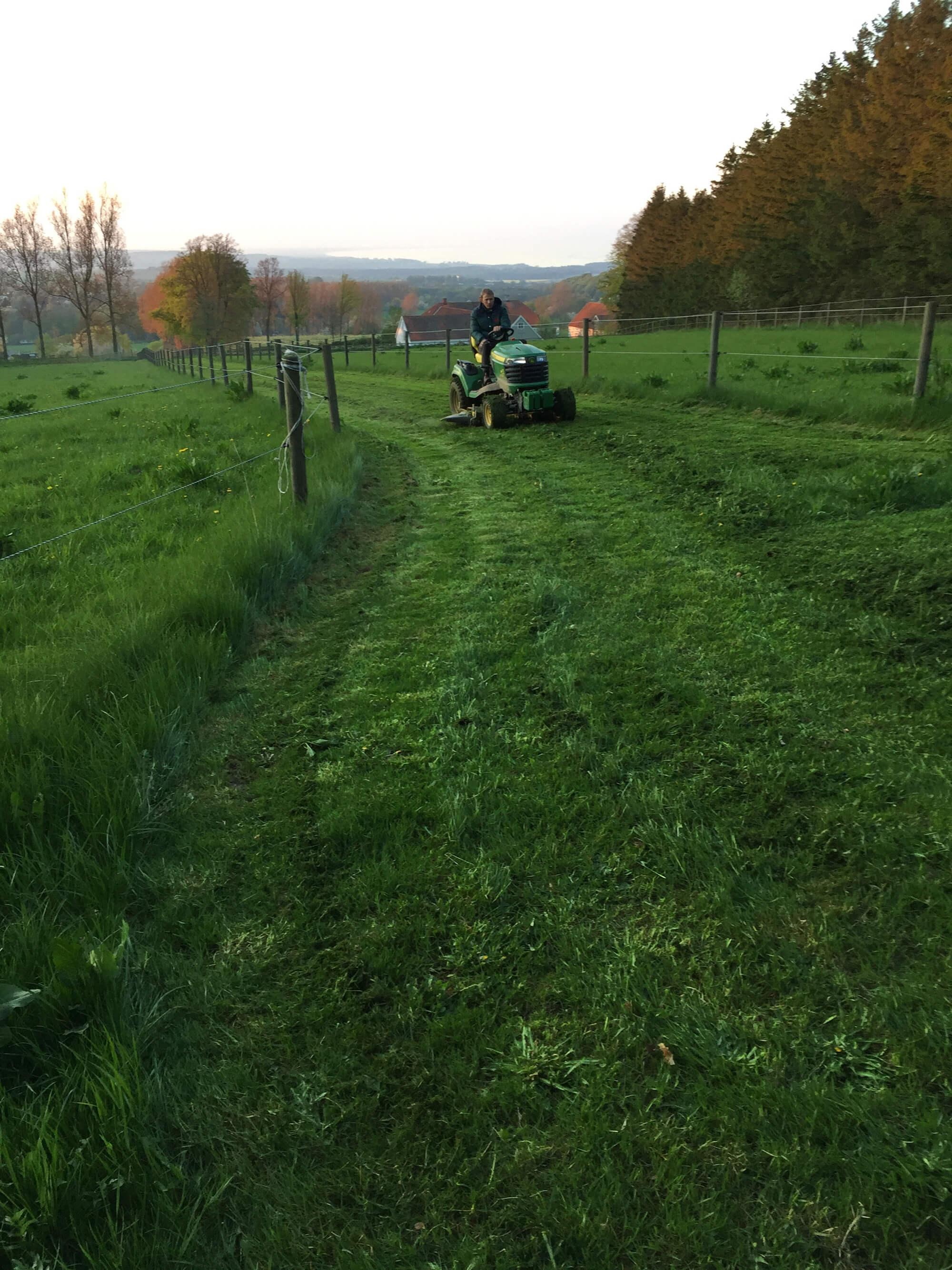Person klipper gräset med en åkgräsklippare