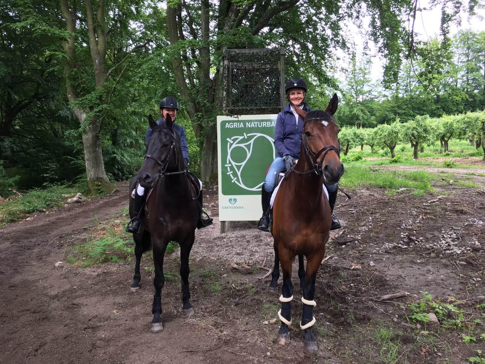 Två personer på två hästar i skogen