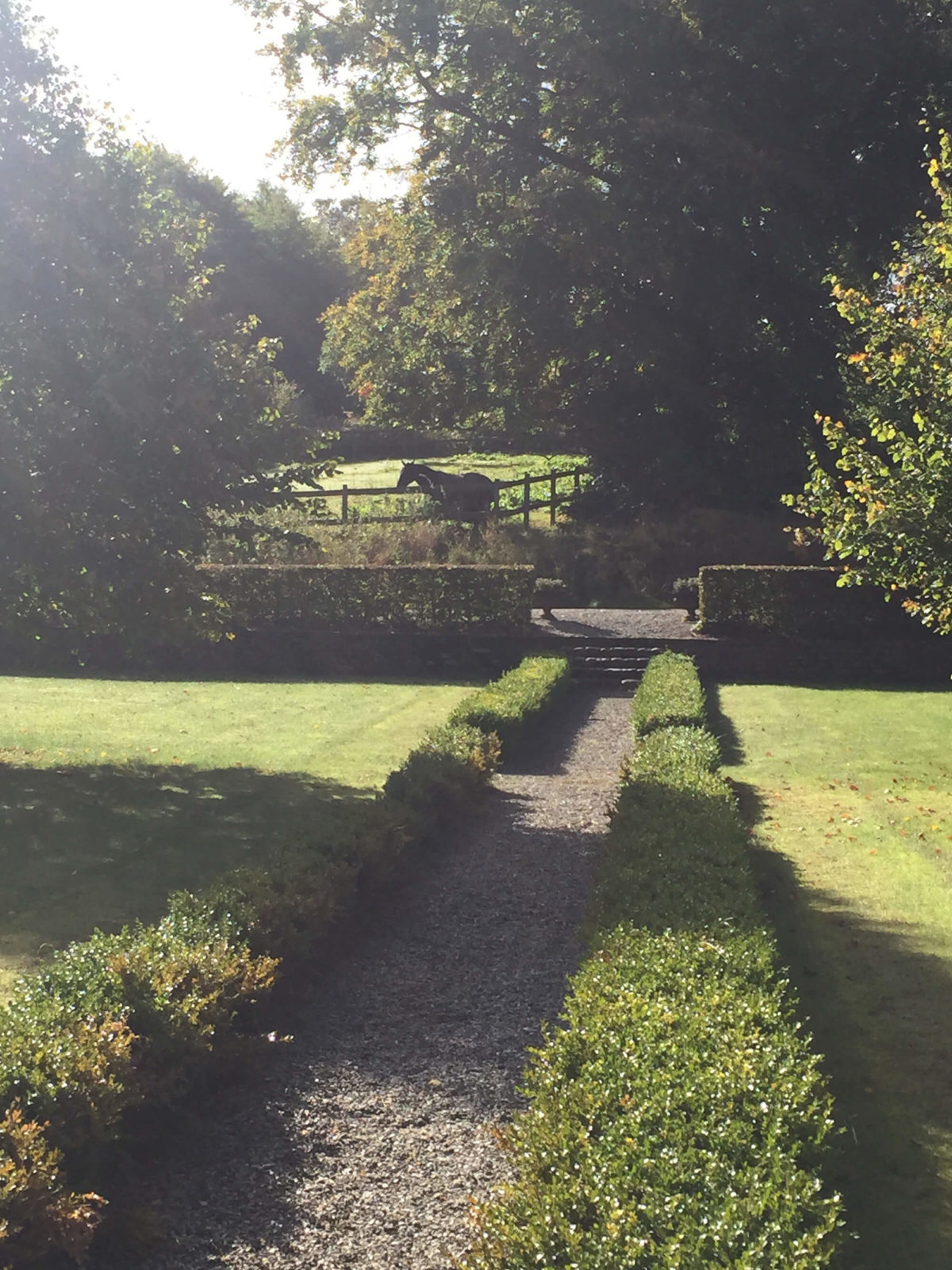 Trädgården vid Grevlundagården