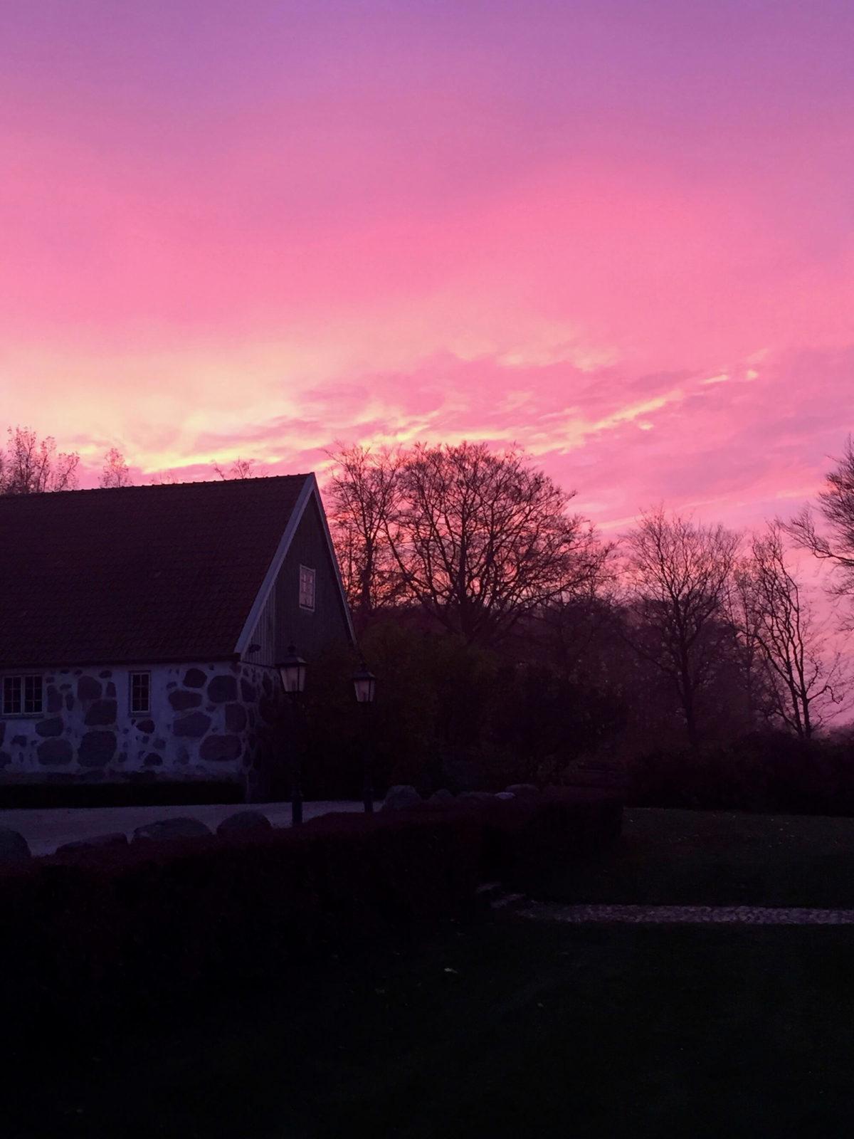 Solnedgång vid Grevlundagården