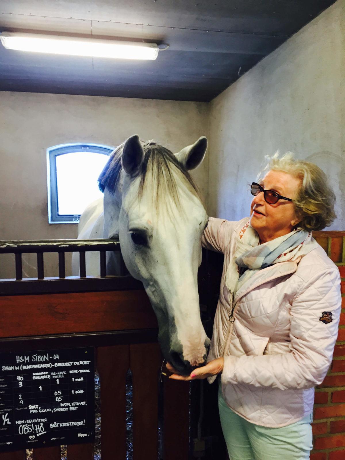 En dam matar en häst i stallet