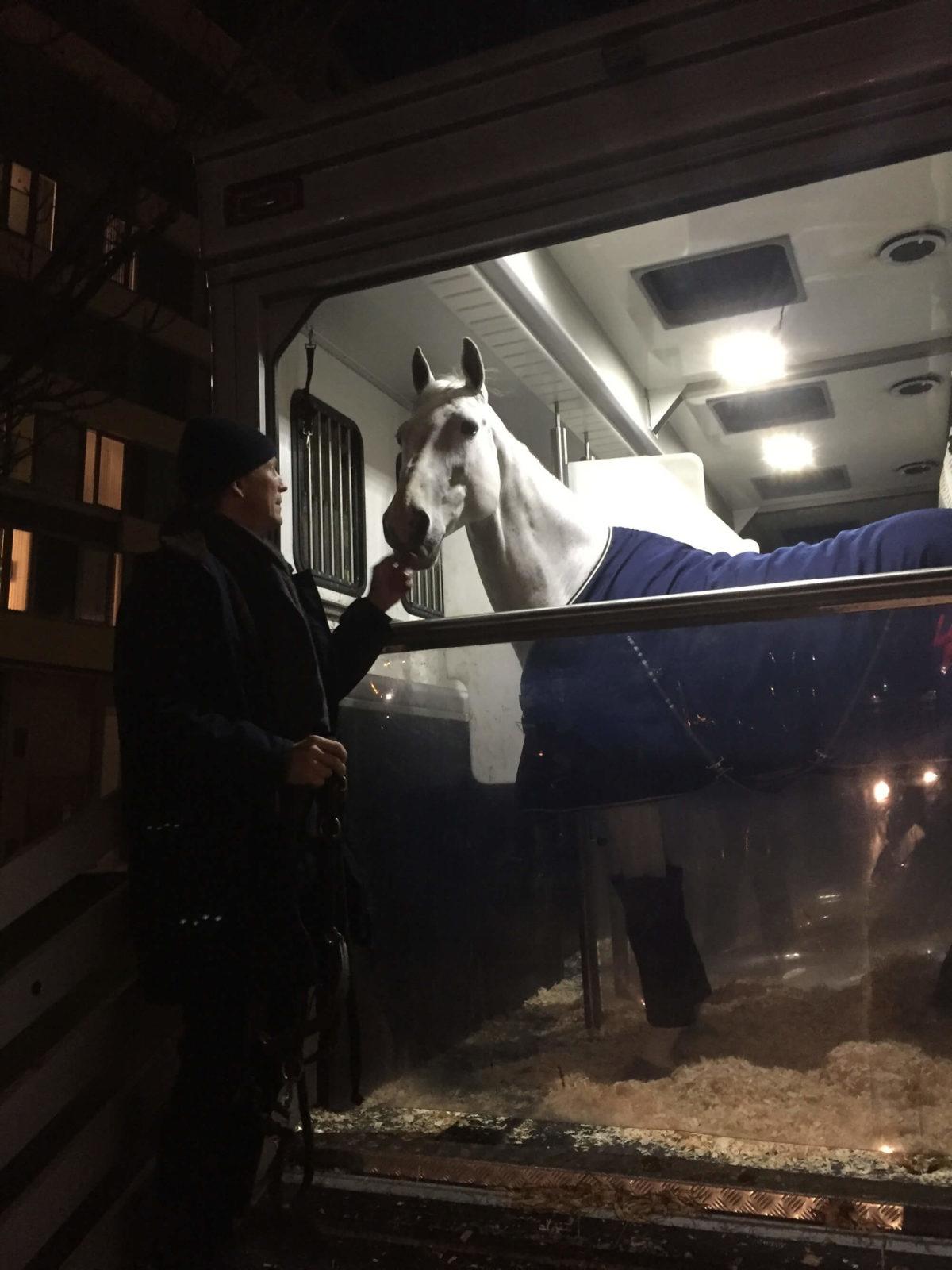 Man och häst