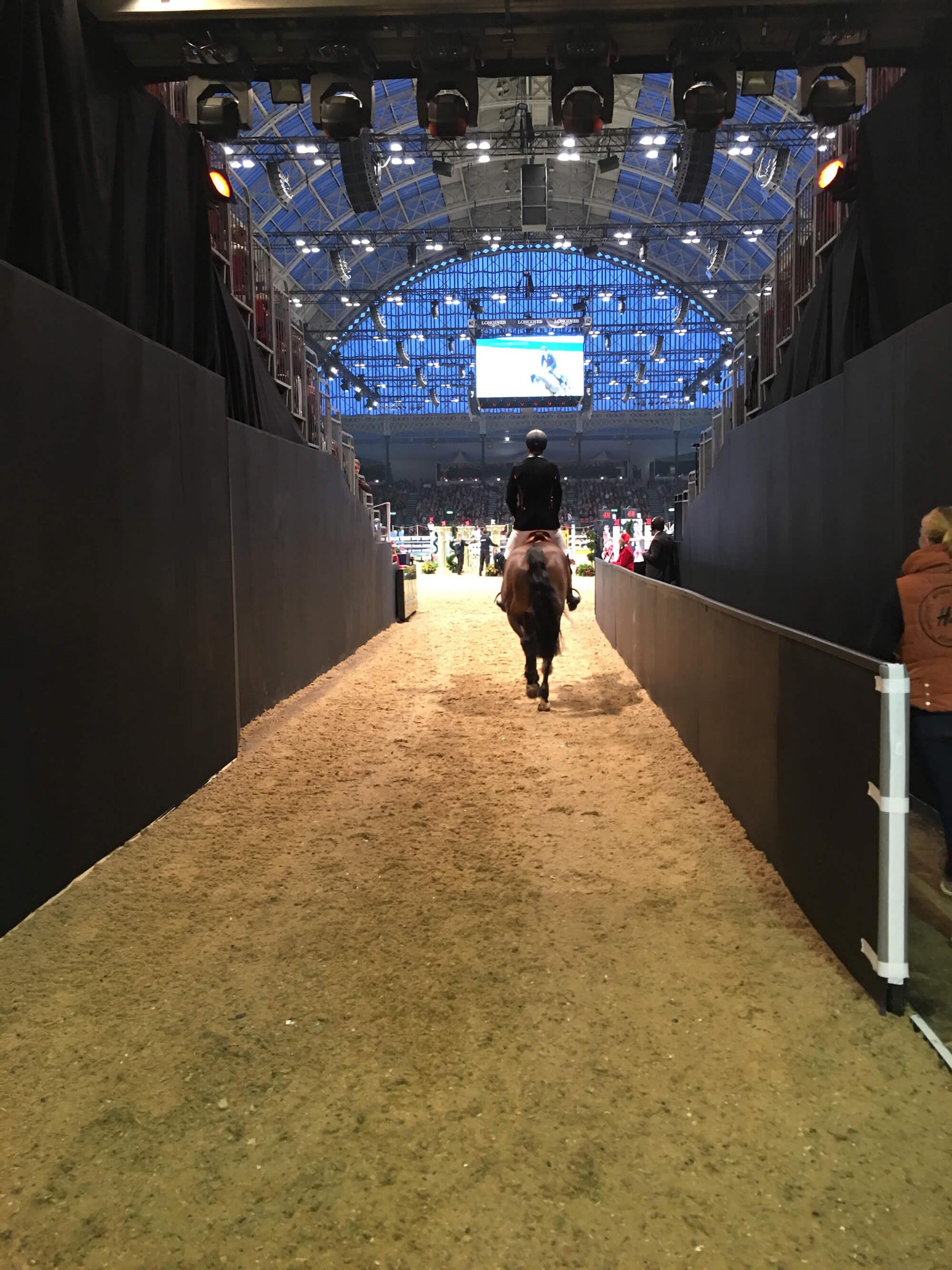 Ryttare och häst rider ut på arenan