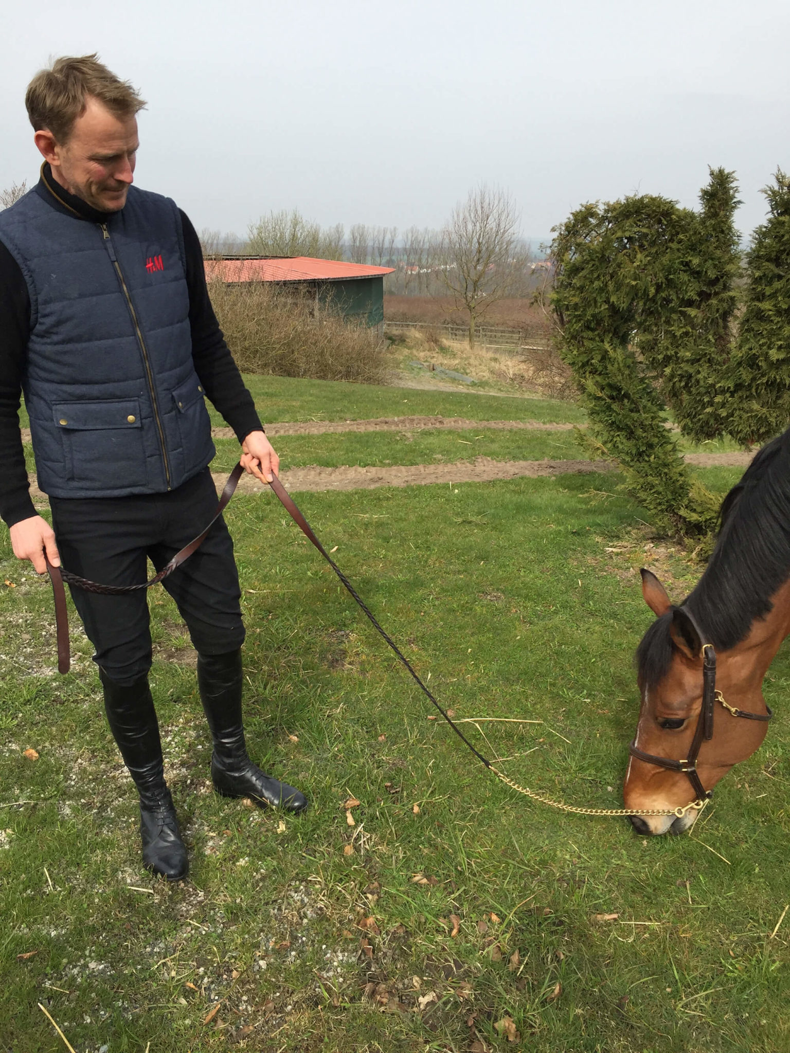 Peder kollar på när en av hästarna äter gräs