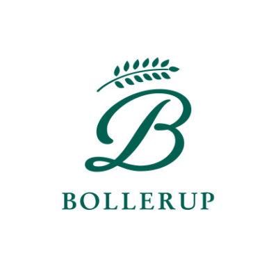 Logotyp Bollerup