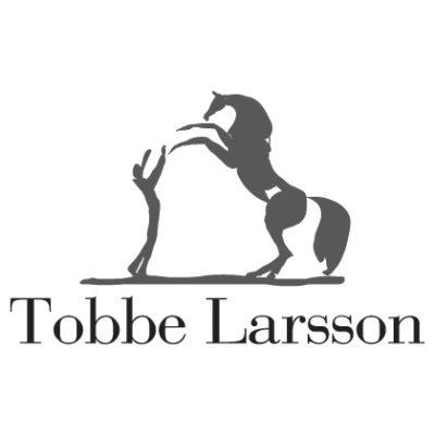 Logotyp Tobbe Larsson
